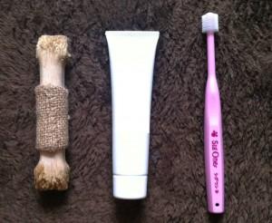 さくらの歯磨きアイテムの写真です