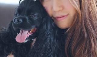 アリエルと岡田社長の写真11月13日掲載