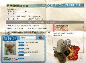 犬の旅行はワクチン証明などが必須